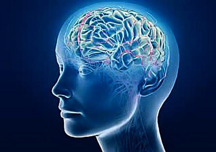 Znanstvenici uspješno izbrisali neželjena sjećanja