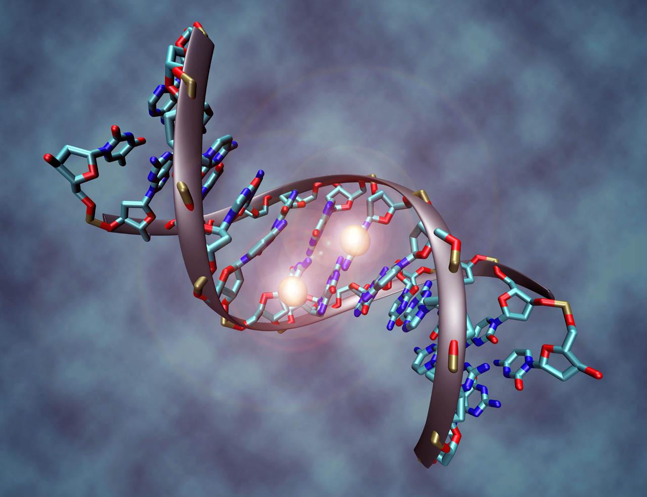 Novo opsežno istraživanje DNK