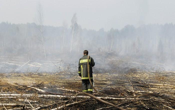 Veliki požar u biblioteci – gorjelo 14 milijuna knjiga