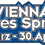 vbs2013 logo