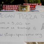 Vegan Pizza Day 1