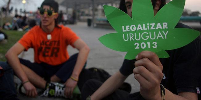 urugvaj marihuana