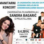 vizual koncerta