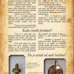 Katalog boris2
