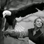 Soheil Entezari Huge Eagle