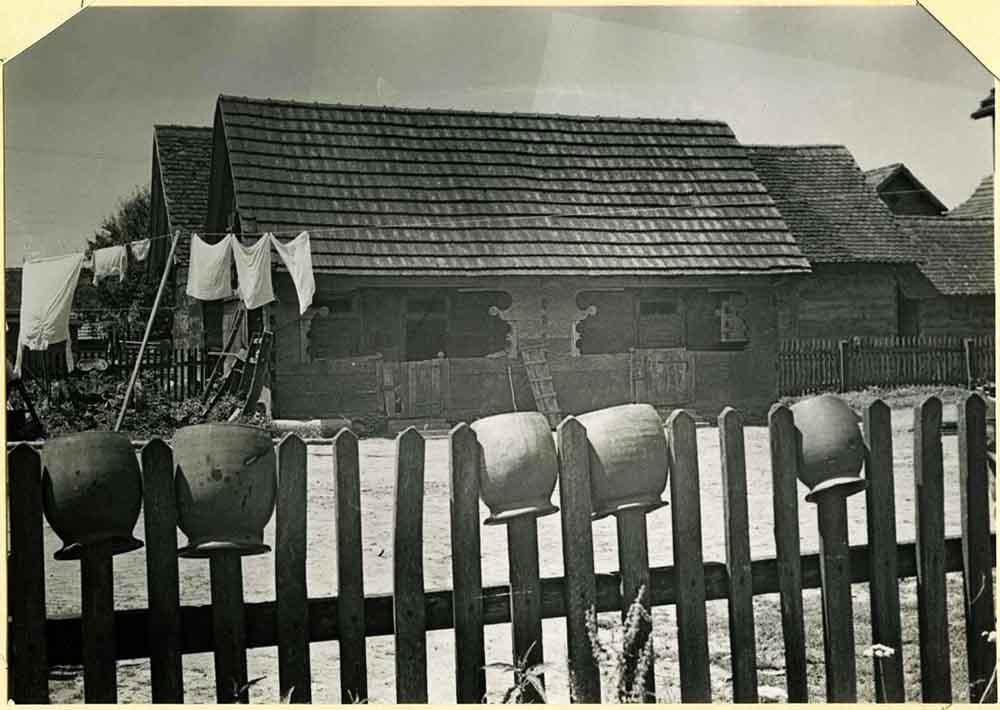 JEŽEVO kod Dugog Sela seoska okućnica snimila Ksenija Marković 1972