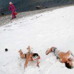 rusija zima6