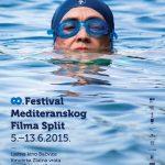 FMFS 2015 vizual