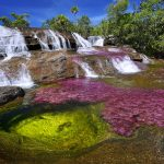 cano cristales river in colombia at the conclusion of wet season