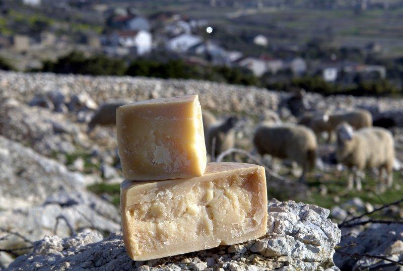 Paški sir – najcjenjeniji hrvatski sir