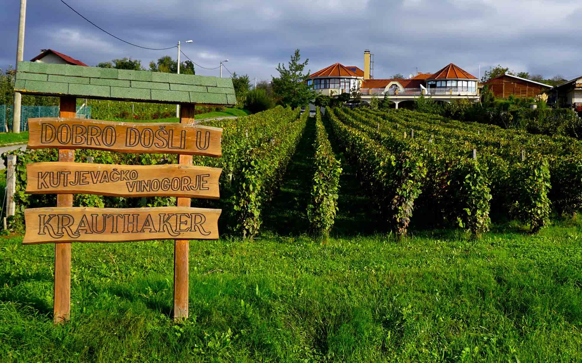Krauthaker – vinogradarstvo i podrumarstvo