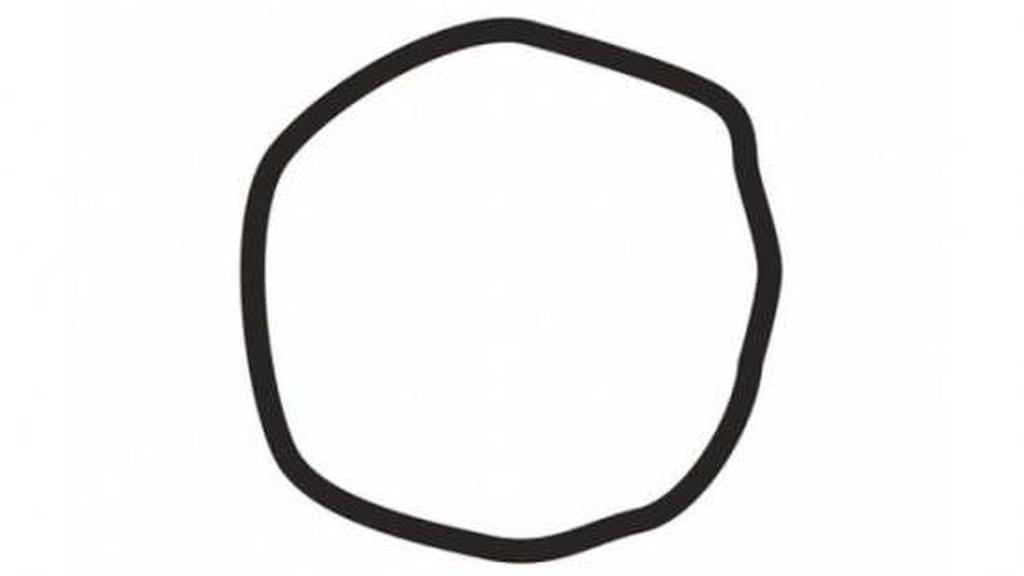 Vidiš li krug na slici? Odgovor otkriva zanimljivu činjenicu o tebi…