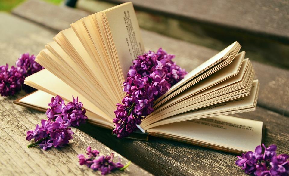 Što više znanja prikupite, više koristi…
