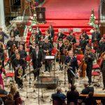 Zadarski komorni orkestar credit Željko Karavida