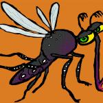 dengue fever 11