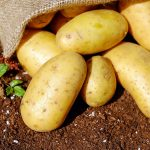 potatoes 15