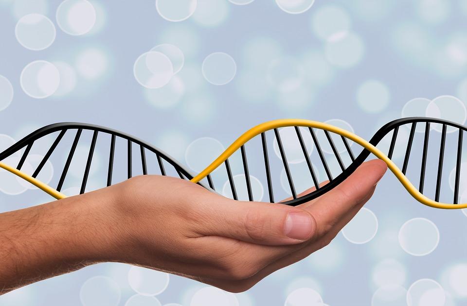Zbog genetskih predispozicija neke obitelji podložnije raku