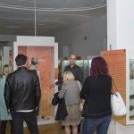 Projekt Iron Age Danube 1