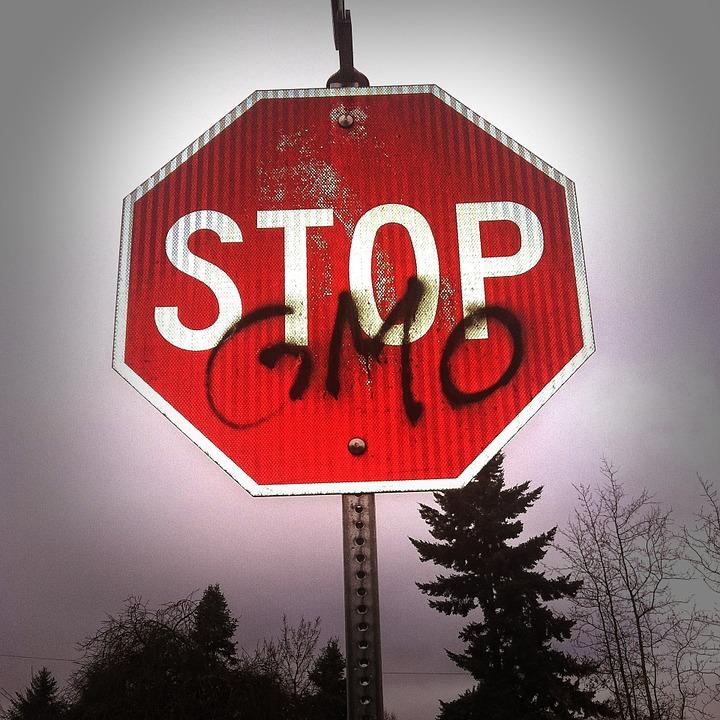 Protivnici novoga Zakona o GMO-u nešto su previdjeli