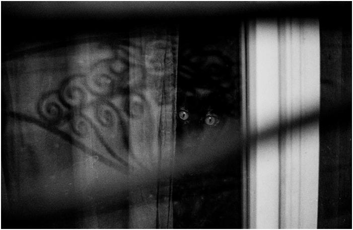 Otvorenje izložbe fotografija Klemen Skubic: HUNT