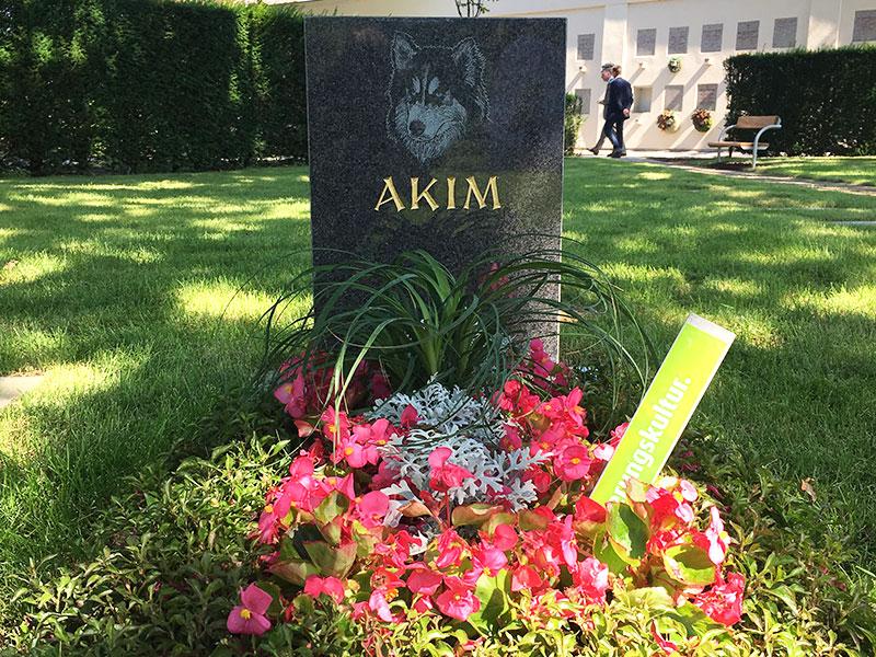 Prvo zajedničko groblje za ljude i životinje u Beču