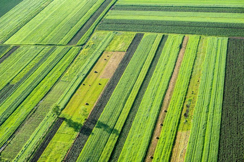 Beč: Računalo kao savjetnik na poljoprivrednim poljima