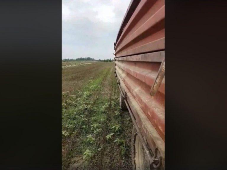 Razočaran u državu bacio 25 tona lubenica
