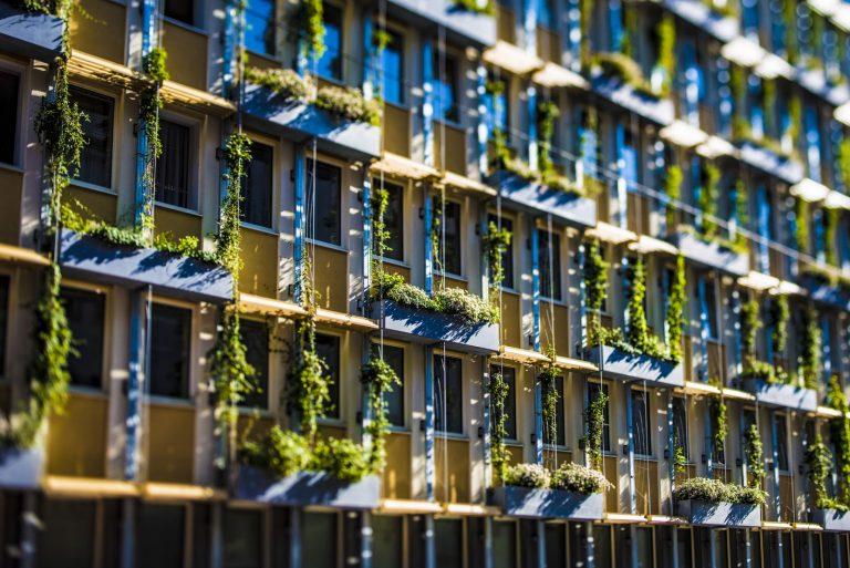 Ozelenjavanjem fasada do nižih temperatura u Beču