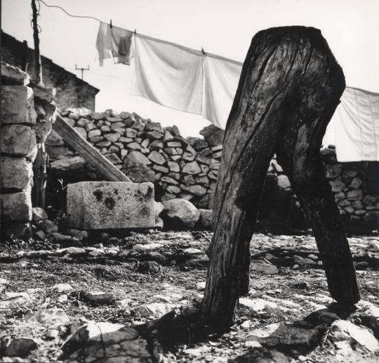 Ante Brkan, photography in Zadar, history of art in Zadar, www.zadarvillas.com