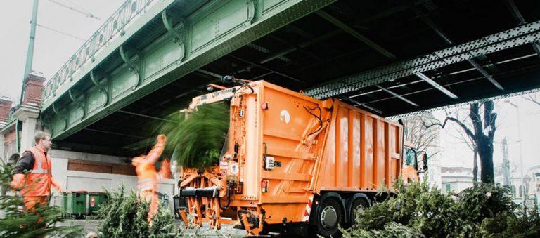 Beč – Božićna drvca kao važan izvor energije