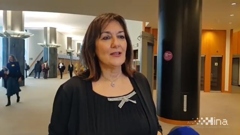 Izjava Dubravke Šuice o Dubrovniku
