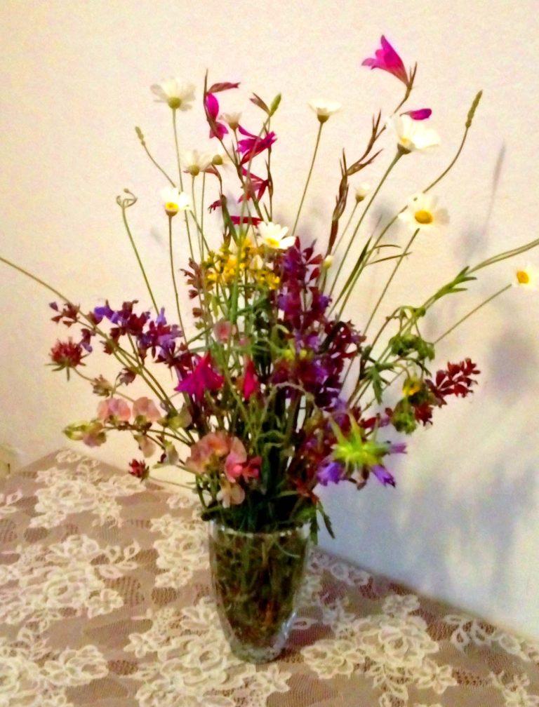 U Mramorkinoj vinogradini osam vrsta cvijeća raskošnoga, u Milanovoj negdašnjoj lazini buhač prošarao