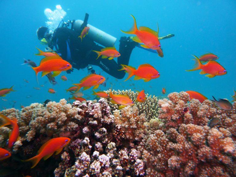 Program obavljanja podvodnih aktivnosti u morskim vodama gdje se nalazi kulturno dobro, za 2019. – 2023. godinu