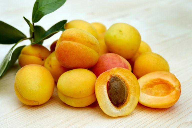 Bečki Caritas sakuplja voće iz privatnih vrtova