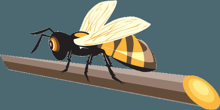 Koji insekti najčešće uzrokuju alergiju?