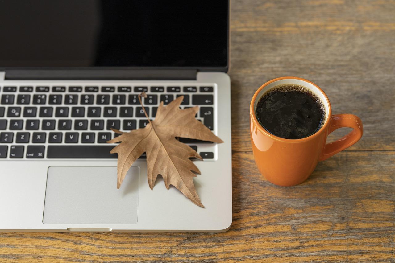 laptop, work, the work