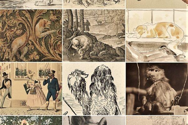 Virtualna izložba Grafičke zbirke NSK posvećena životinjama u likovnoj umjetnosti