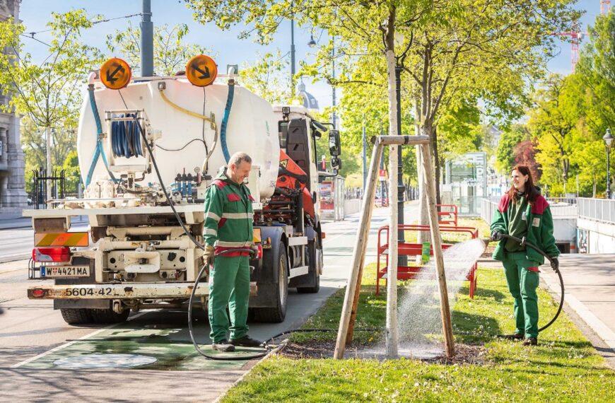 U Beču se svake godine posadi 4.500 novih stabala
