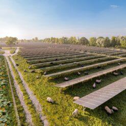 Beč obara rekorde u izgradnji solarnih postrojenja