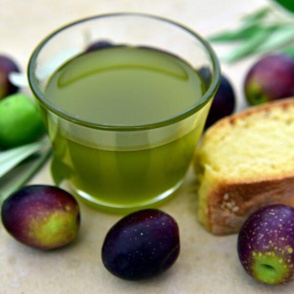 Maslinovo ulje – OPG Melon Novigrad