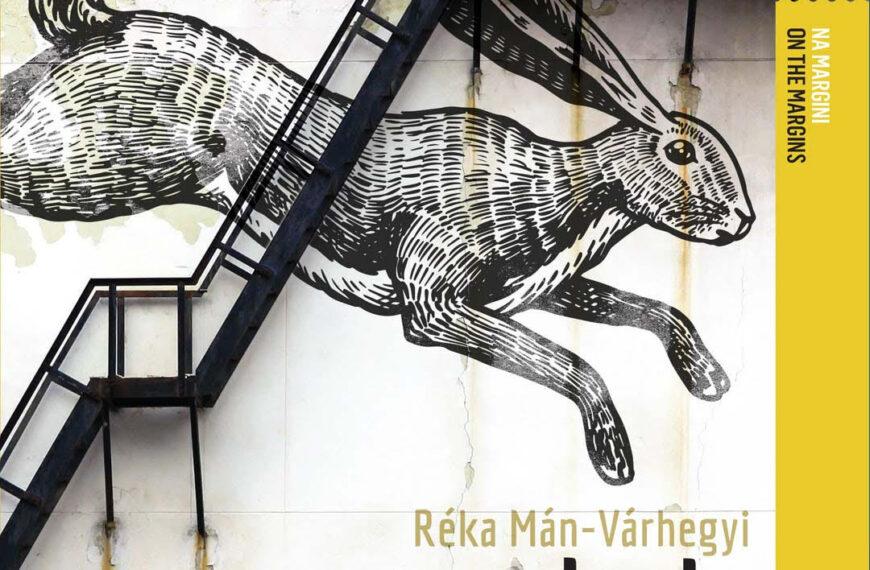 "Roman ""Magnetno brdo"" autorice Réke Mán"