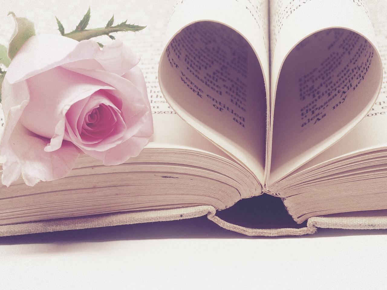 Pero Pavlović – RUŽA