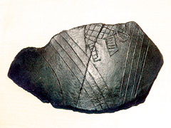 Jadranska legenda o Antenoru (6)