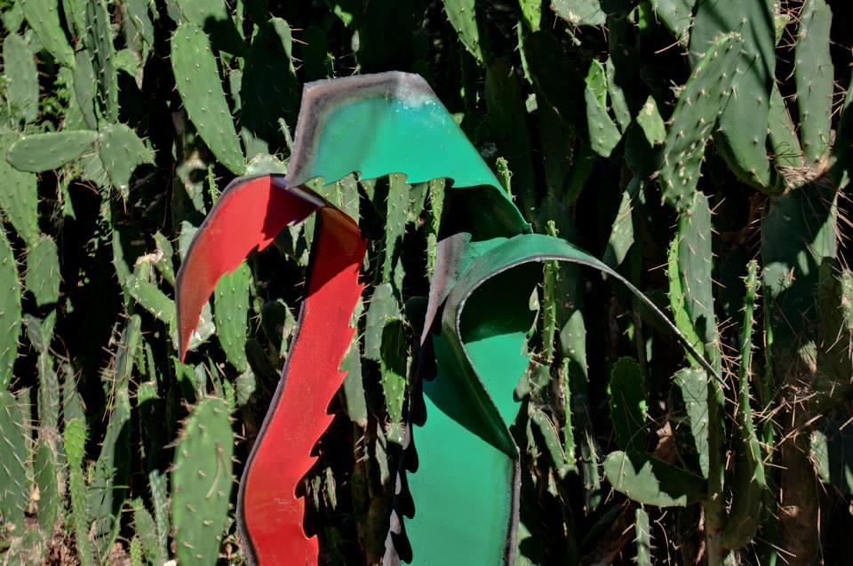 Dalibor-Stosic agave1